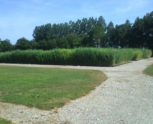 Station épuration filtres plantés dans la commune de MOULINS-LE-CARBONNEL