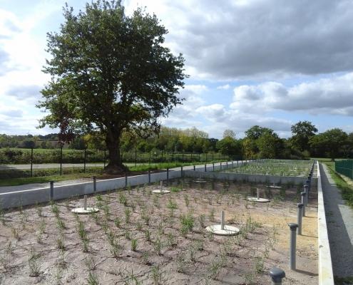 Station épuration filtres plantés dans la commune de BONNŒUVRE