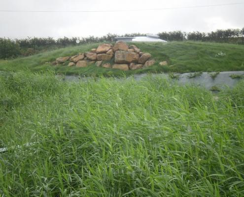 Station épuration filtres plantés dans la commune de CHÂTILLON-SUR-COLMONT