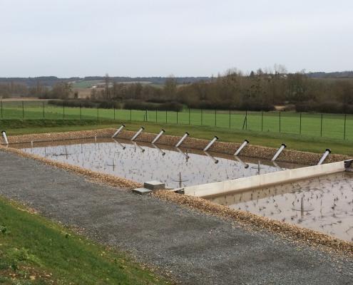Station épuration filtres plantés dans la commune de COUSSAY-LES-BOIS
