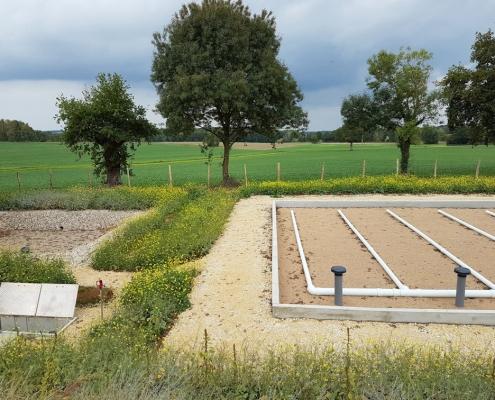 Station épuration filtres plantés dans la commune de GENOUILLY