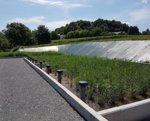 Station épuration filtres plantés dans la commune de THIZAY